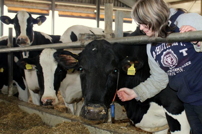 Ausbildung zum Tierwirt/in bei Methauer AGRO-AG
