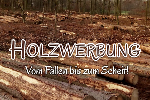 Holzverkauf bei der  Methauer AGRO-AG