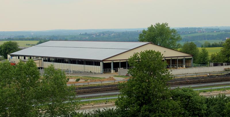 Milchkuhhaltung bei der Methauer AGRO-Agrarprodukte GmbH