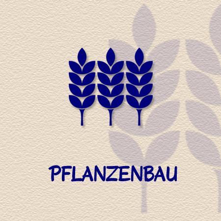 Pflanzenbau als Geschäftszweig der Methauer AGRO-Agrarprodukte GmbH