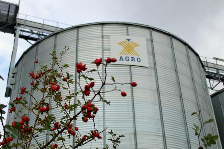 Getreidesilo Methauer Argo-Ag