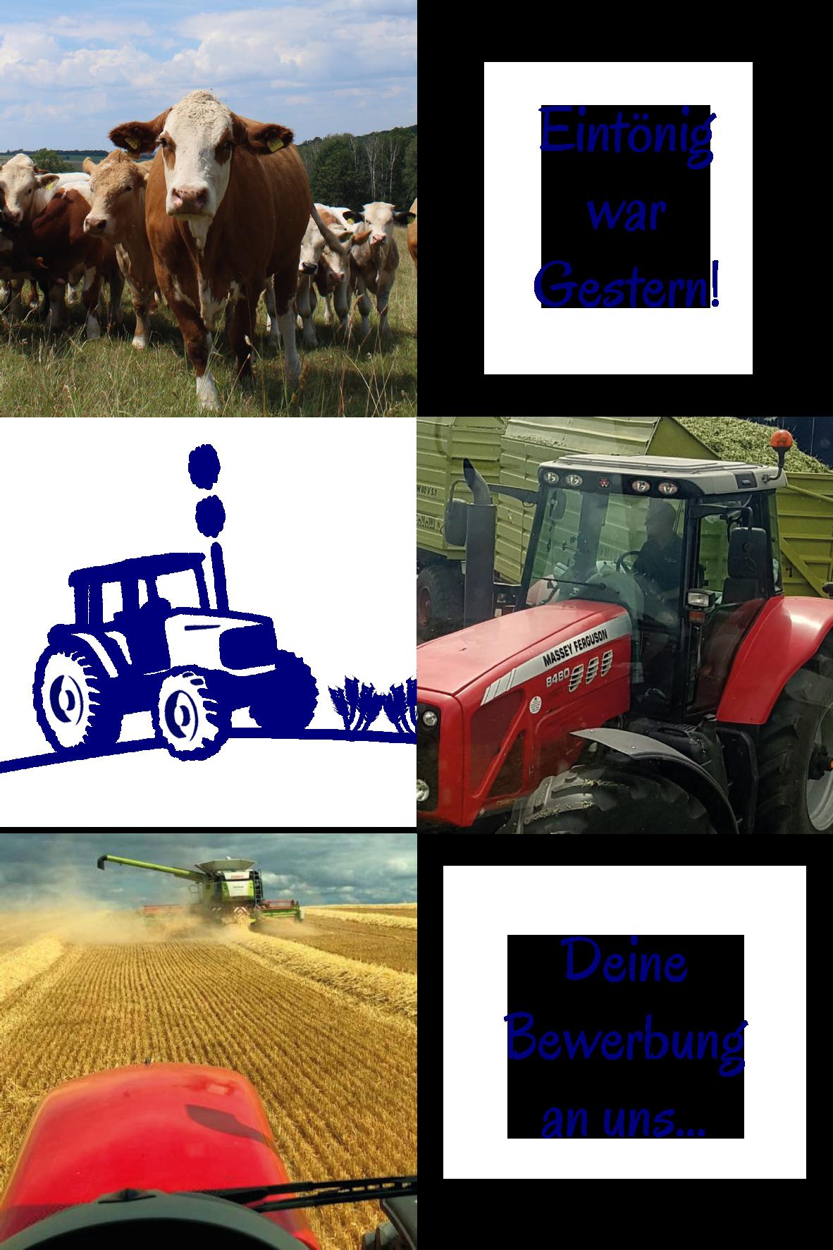 Ausbildungsberuf Landwirt m/w/d - Methauer AGRO-AG