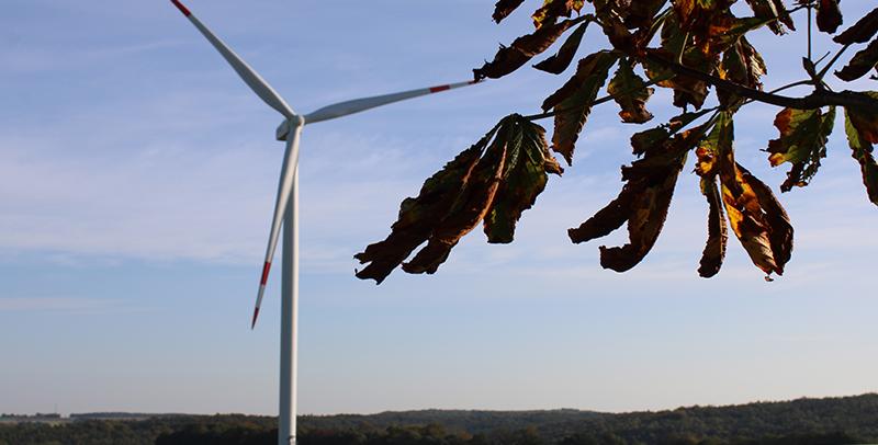 Windkraftenergie der AGRO-Naturenergie GmbH