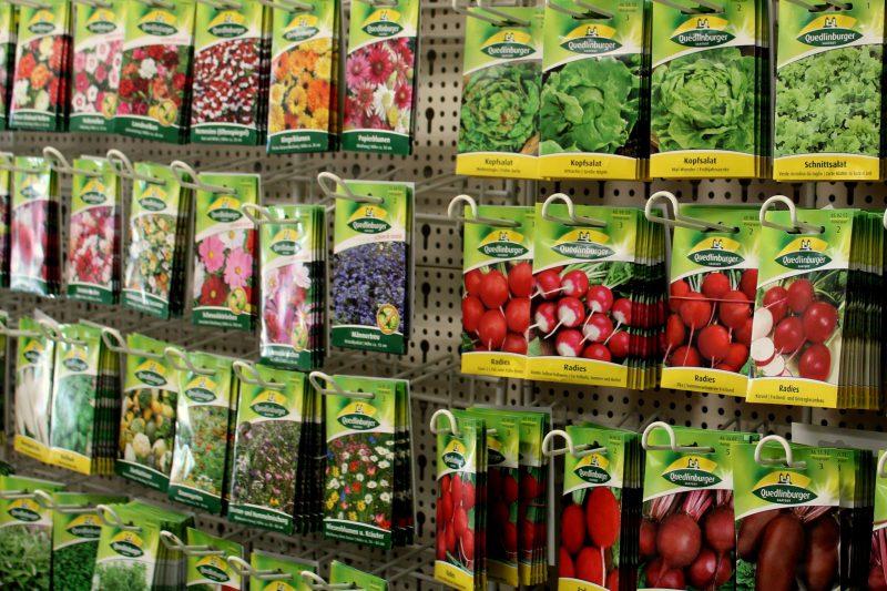 Gartenfreunde aufgepasst - Ragema-Markt in Methau